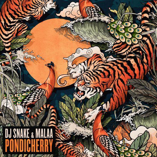 dj snake x Malaa - Pondicherry